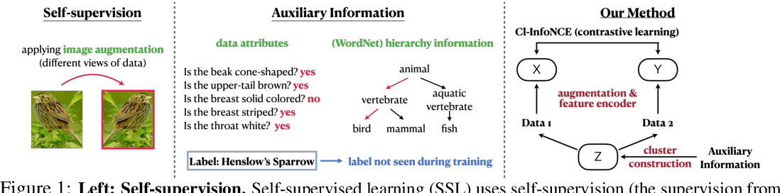 Figure 1 for Integrating Auxiliary Information in Self-supervised Learning