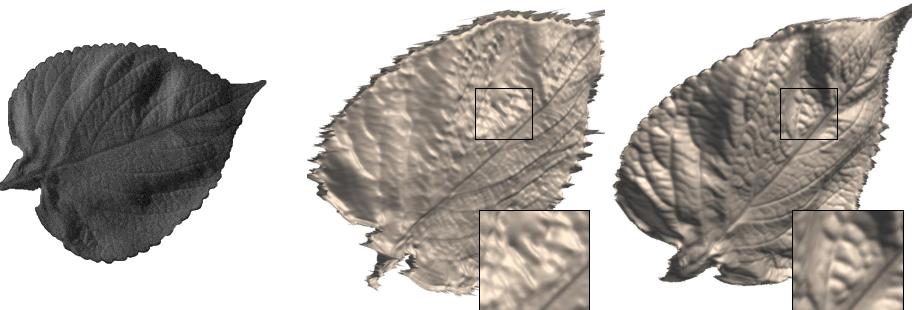 Figure 1 for Fine-scale Surface Normal Estimation using a Single NIR Image