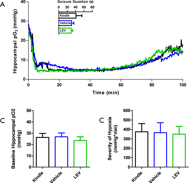 Figure 4-6: Unchanged SISHE severity in response to levetiracetam