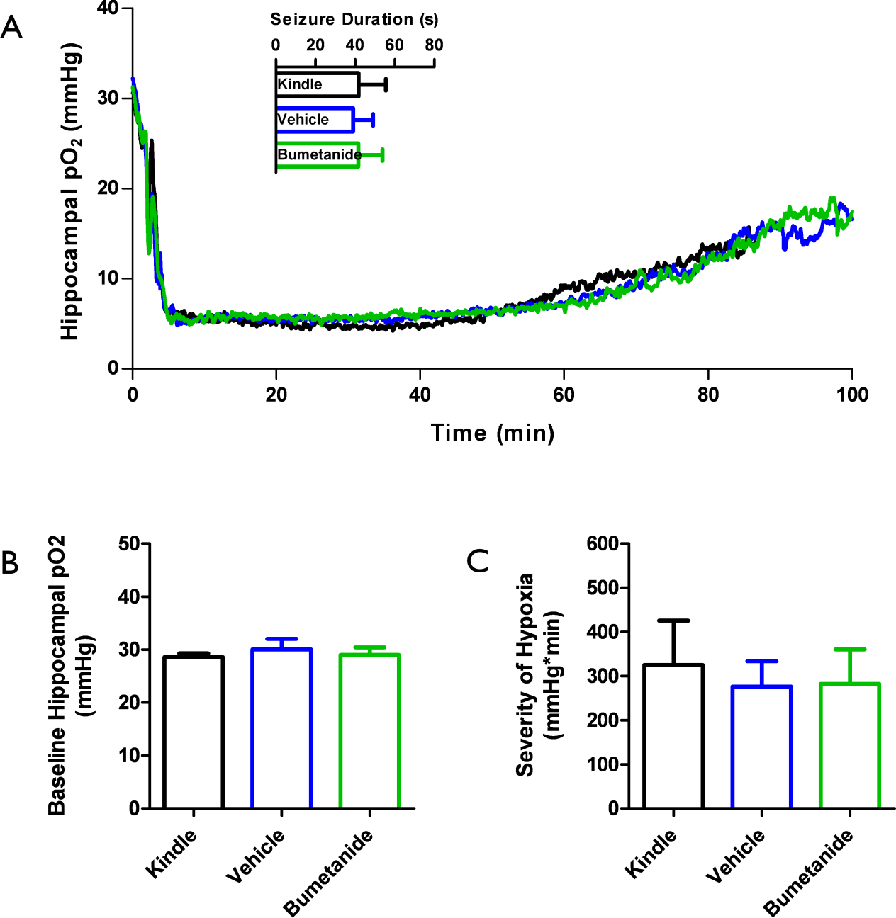 Figure 4-9: Lack of changes in SISHE severity and seizure durations post-bumetanide