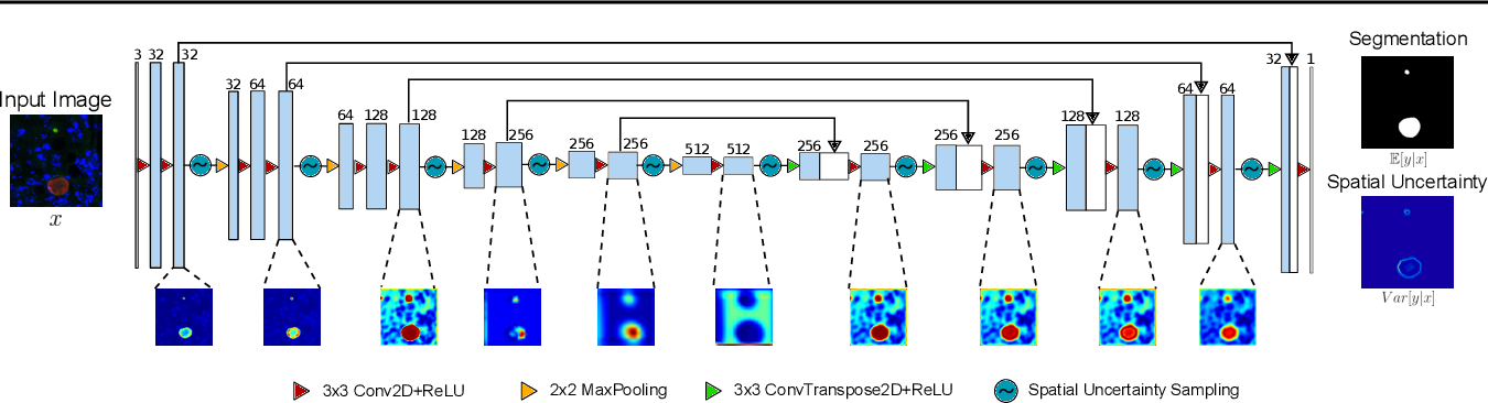Figure 2 for Image segmentation of liver stage malaria infection with spatial uncertainty sampling