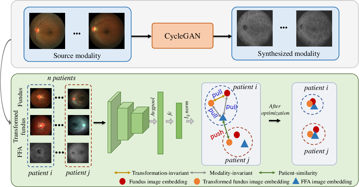 Figure 2 for Self-supervised Feature Learning via Exploiting Multi-modal Data for Retinal Disease Diagnosis