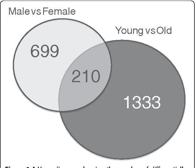 Venn diagram definition statistics of sexual immorality