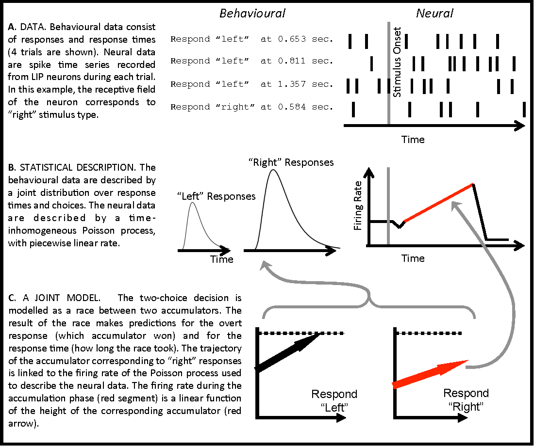A generative joint model for spike trains and saccades during