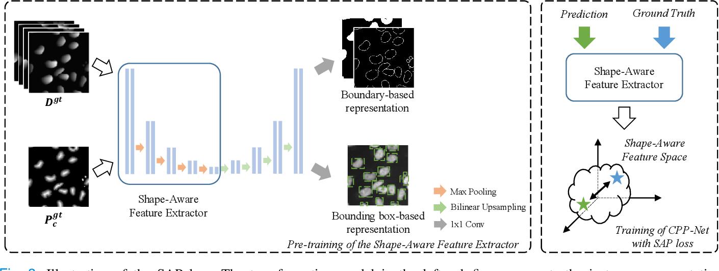 Figure 3 for CPP-Net: Context-aware Polygon Proposal Network for Nucleus Segmentation