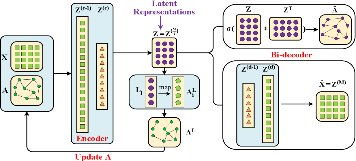 Figure 1 for Graph Convolutional Auto-encoder with Bi-decoder and Adaptive-sharing Adjacency