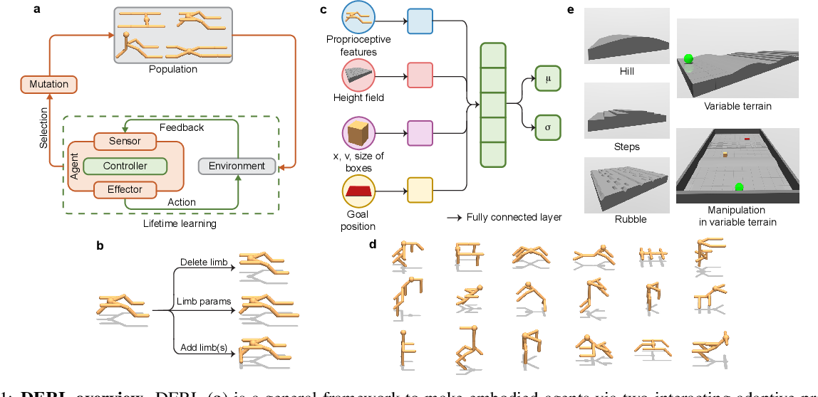 Figure 1 for Embodied Intelligence via Learning and Evolution