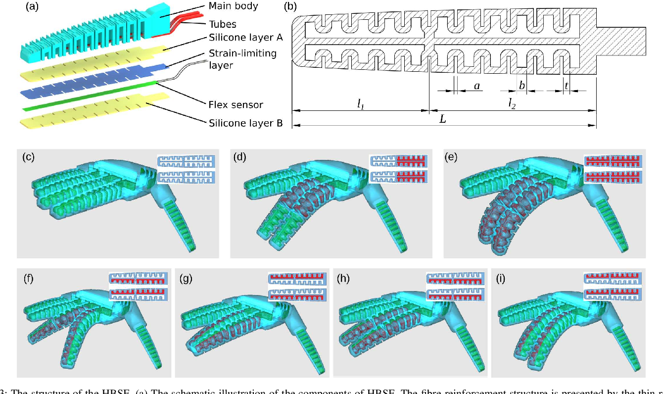 Figure 3 for A Novel Design of Soft Robotic Hand with a Human-inspired Soft Palm for Dexterous Grasping