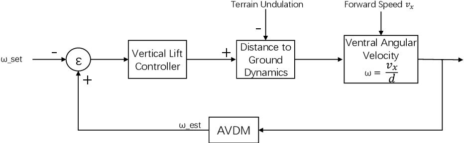 Figure 4 for Constant Angular Velocity Regulation for Visually Guided Terrain Following