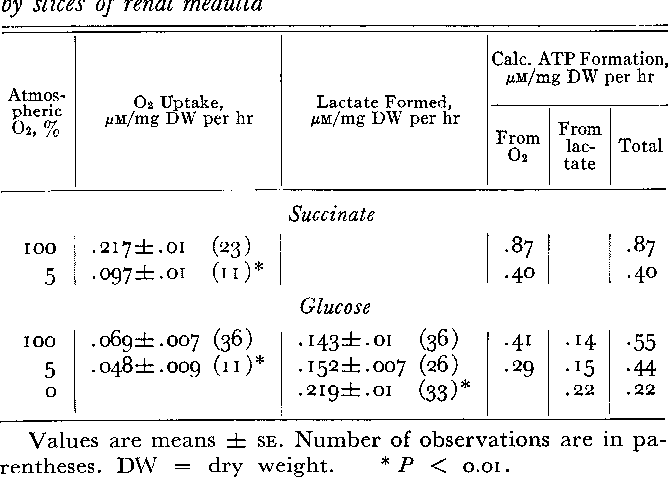 Table I From Metabolism Of The Renal Medulla Semantic Scholar