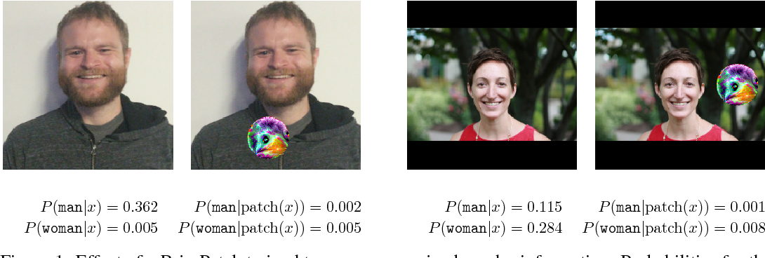 Figure 1 for BriarPatches: Pixel-Space Interventions for Inducing Demographic Parity