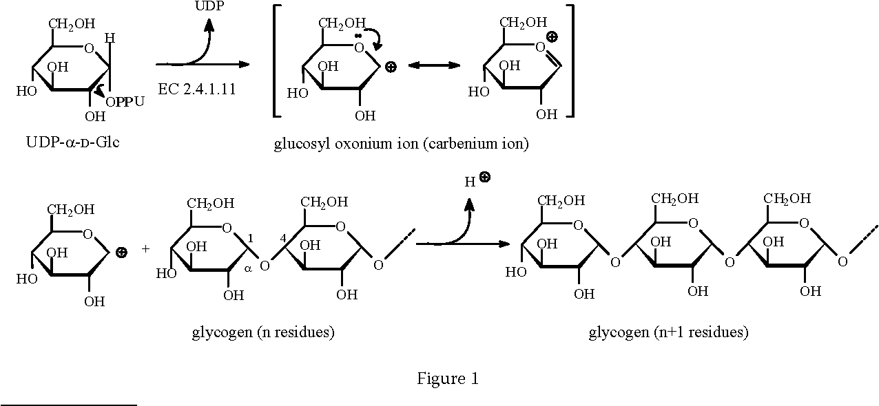 Figure 1 From Biosynthesis Of Food Constituents Saccharides 2