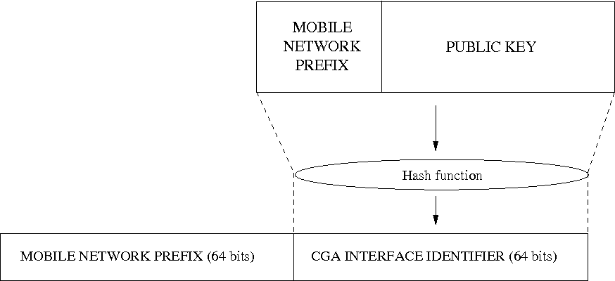 Figure 5. Simplified overview of CGA creation and structure.
