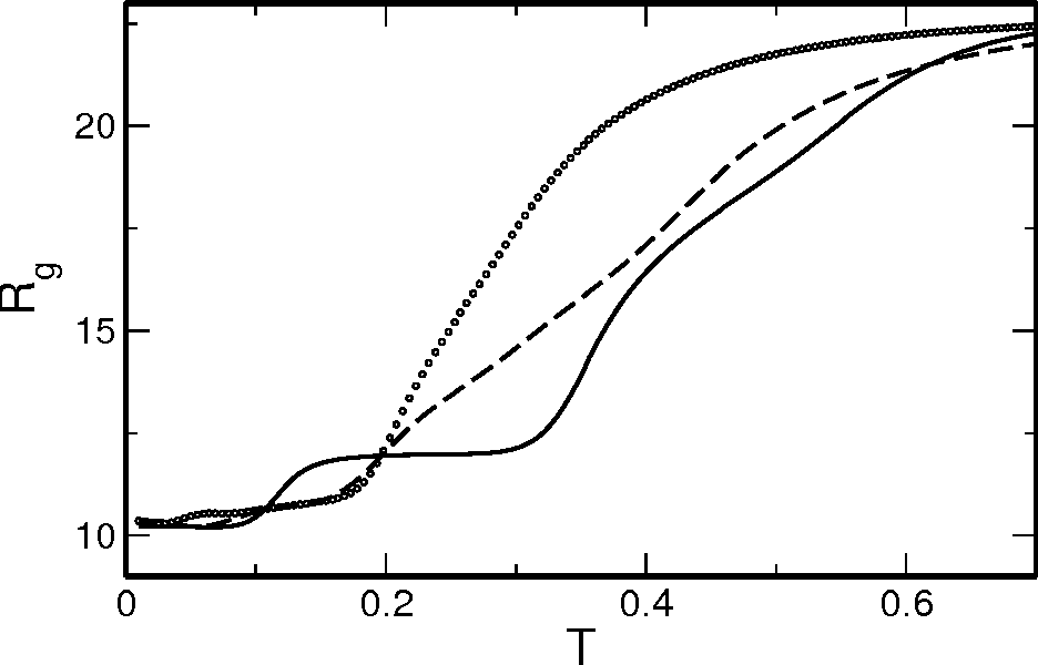 FIG. 8: Radius of gyration as function of temperature for three sequences rapresentative of the three groups; a good folder (sequence s1, continous solid curve), a bad folder (sequence s4, dashed curve) and a random sequence (sequence s7, open dots).