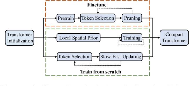 Figure 1 for Evo-ViT: Slow-Fast Token Evolution for Dynamic Vision Transformer