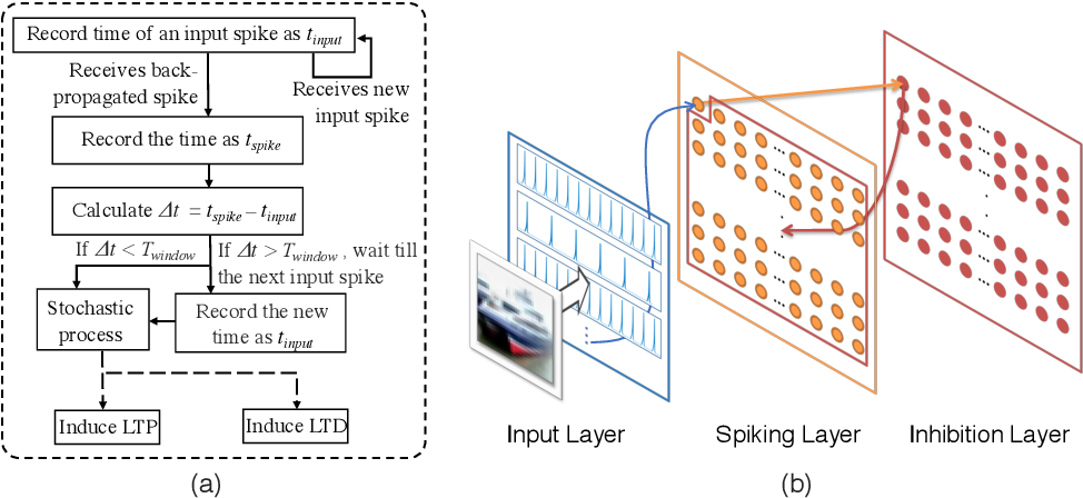 Figure 1 for ScieNet: Deep Learning with Spike-assisted Contextual Information Extraction