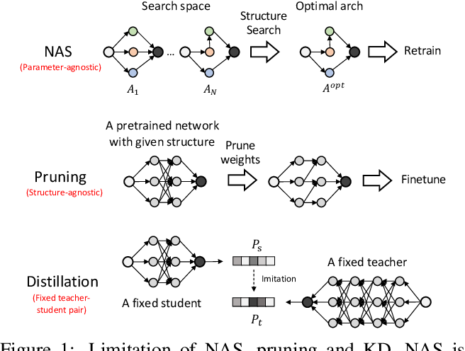 Figure 1 for Joint-DetNAS: Upgrade Your Detector with NAS, Pruning and Dynamic Distillation