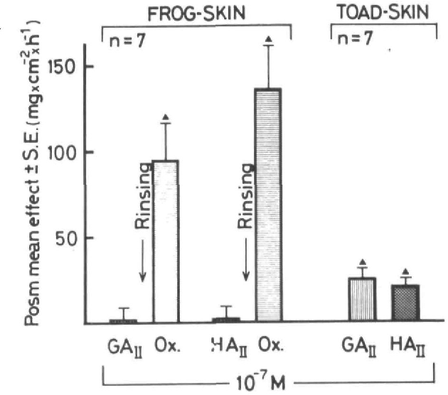 Figure 4 From Effects Of Frog Skin Angiotensin Ii In Amphibians