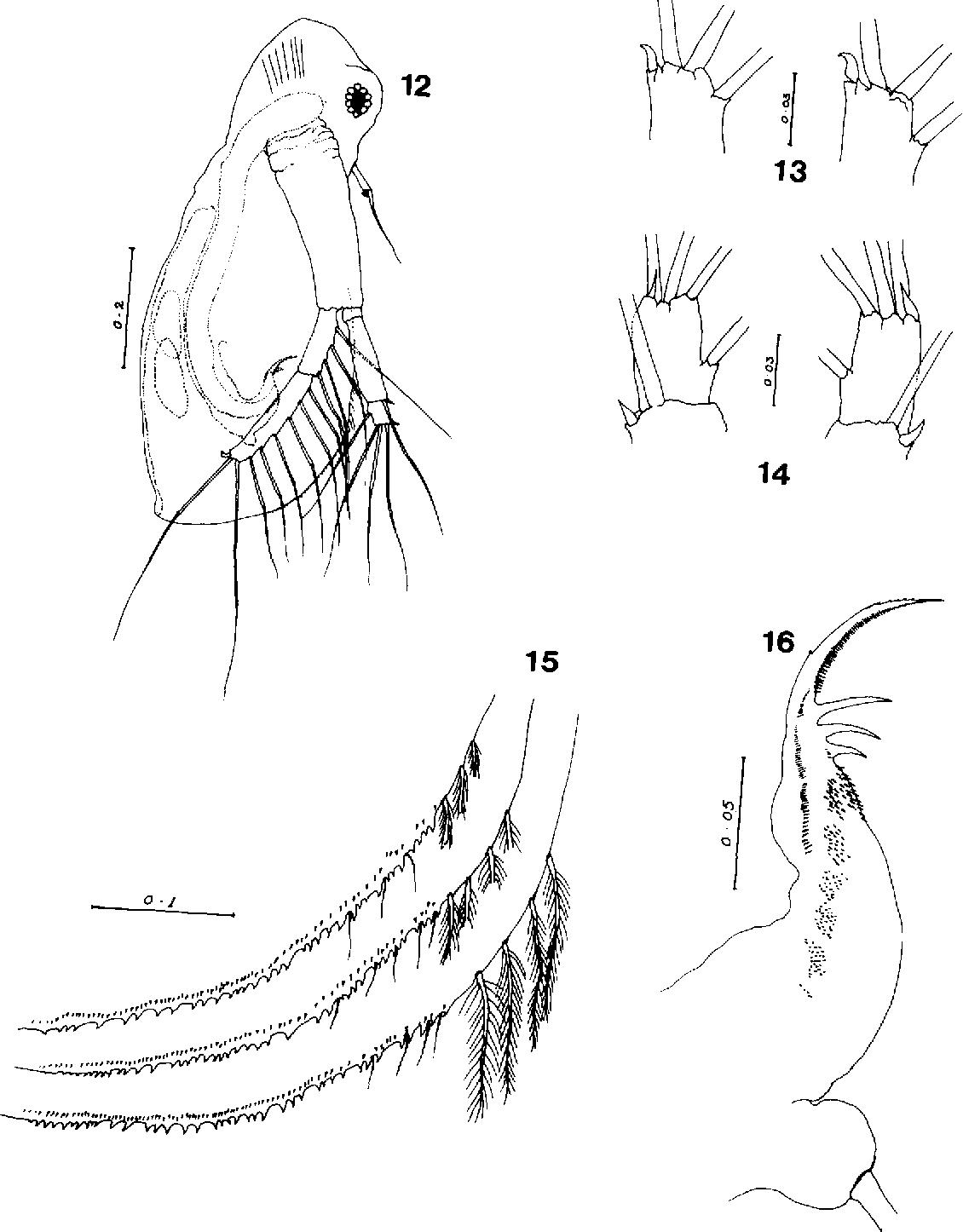 figure 12-16