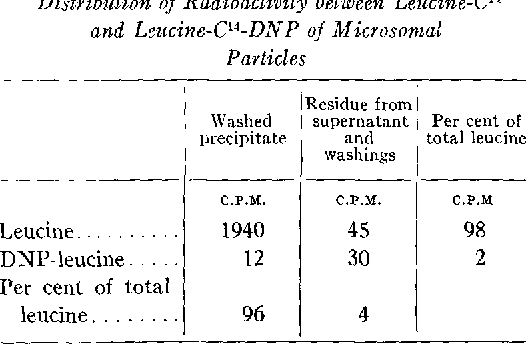 Table IV from The Incorporation of Leucine-C 4 into