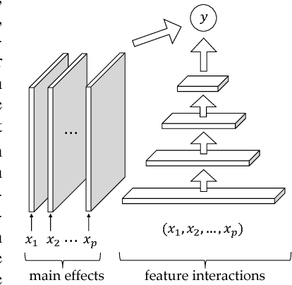 Figure 2: An illustration of the neural network architecture for interaction detection, MLP-M. Main effects are modeled by the lefthand networks, which are used to minimize the detection of spurious interactions in the righthand primary network.