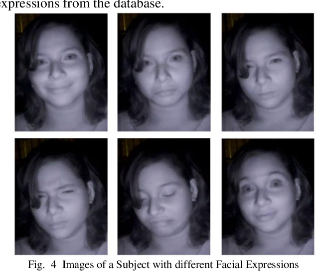 Figure 4 for A Video Database of Human Faces under Near Infra-Red Illumination for Human Computer Interaction Aplications