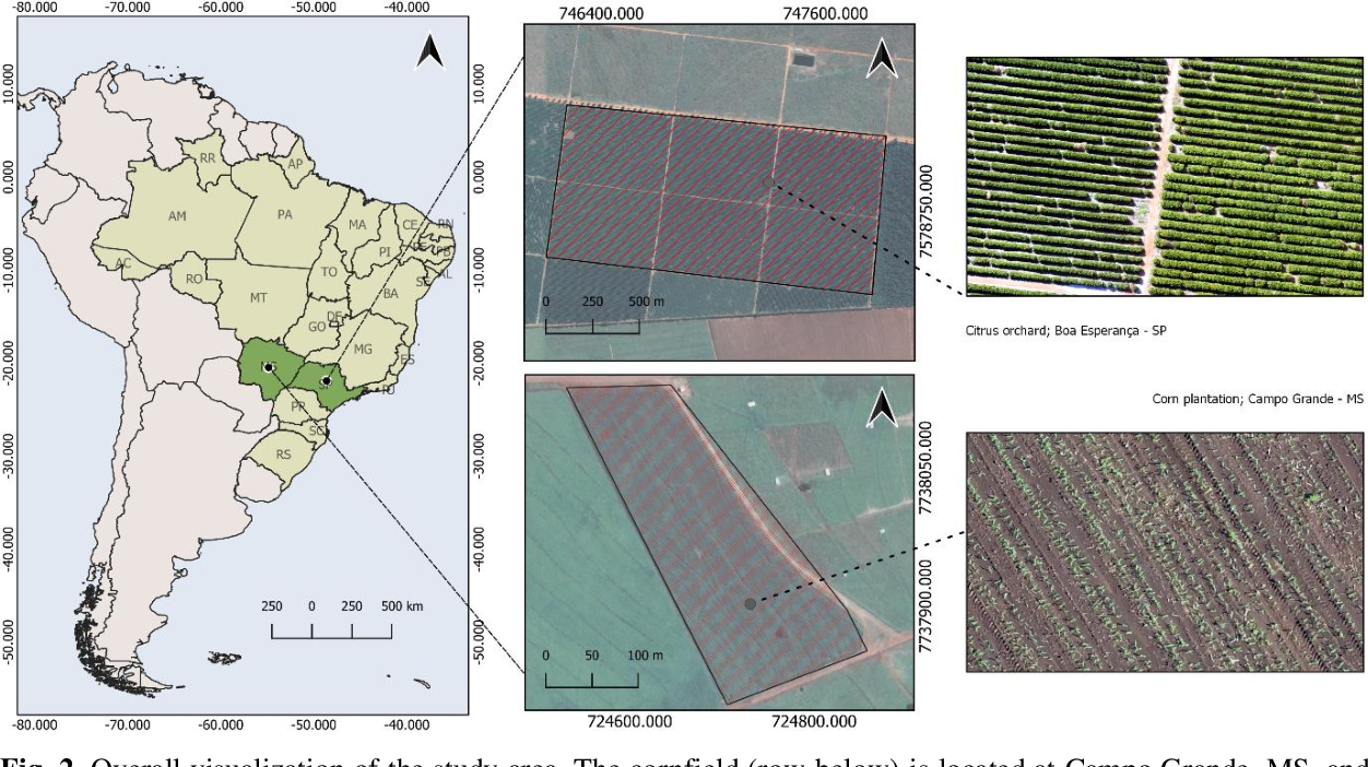 Figure 3 for A CNN Approach to Simultaneously Count Plants and Detect Plantation-Rows from UAV Imagery