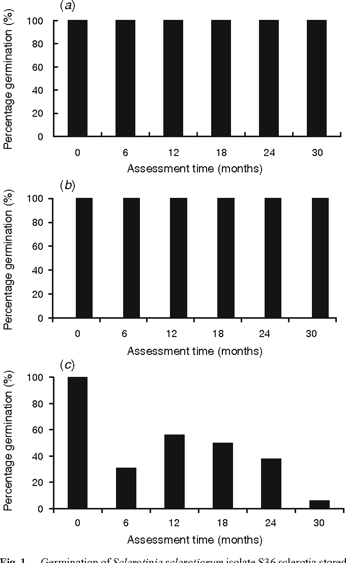 Fig. 1. Germination of Sclerotinia sclerotiorum isolate S36 sclerotia stored (a) frozen at –80 C, (b) dry at 4 Cand (c) freeze-dried over a 30-month period. The least significant difference (P= 0.05) for freeze-dried was 35.