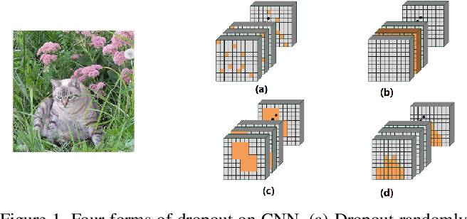 Figure 1 for FocusedDropout for Convolutional Neural Network