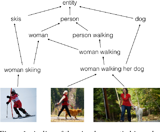 Figure 1 for Order-Embeddings of Images and Language