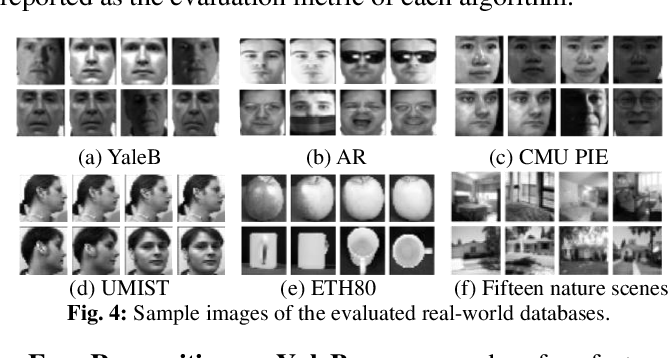 Figure 4 for Learning Structured Twin-Incoherent Twin-Projective Latent Dictionary Pairs for Classification
