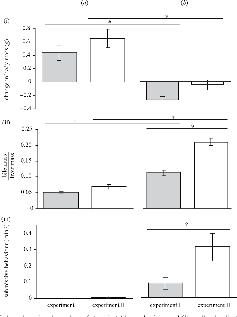 The Gall Of Subordination Changes In Gall Bladder Function