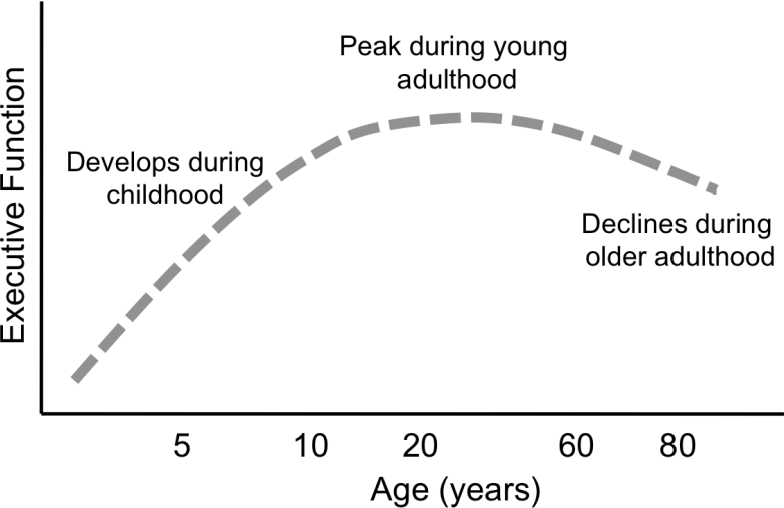 Figure 1.2: Executive functioning across the lifespan. Based on research from Zelazo, Craik, and Booth, 2004; Craik and Bialystok, 2006; Jurado and Rosselli, 2007.