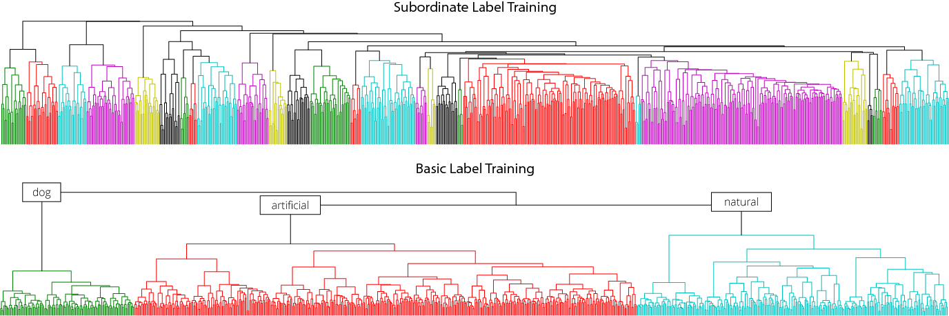 Figure 3 for Learning Hierarchical Visual Representations in Deep Neural Networks Using Hierarchical Linguistic Labels