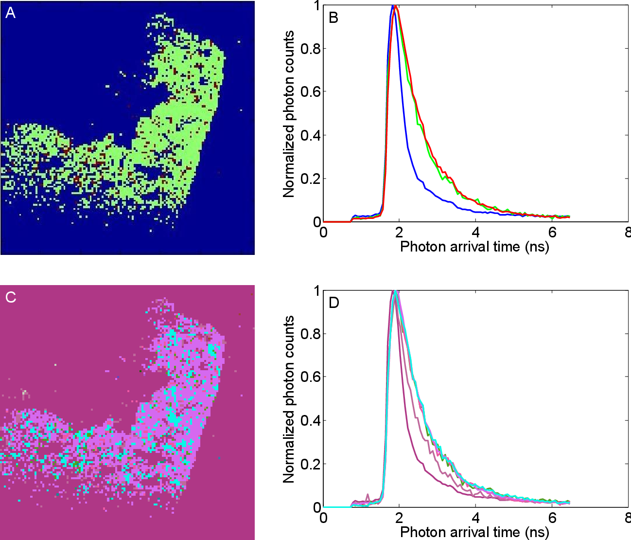 Figure 2 for Automatic Segmentation of Fluorescence Lifetime Microscopy Images of Cells Using Multi-Resolution Community Detection