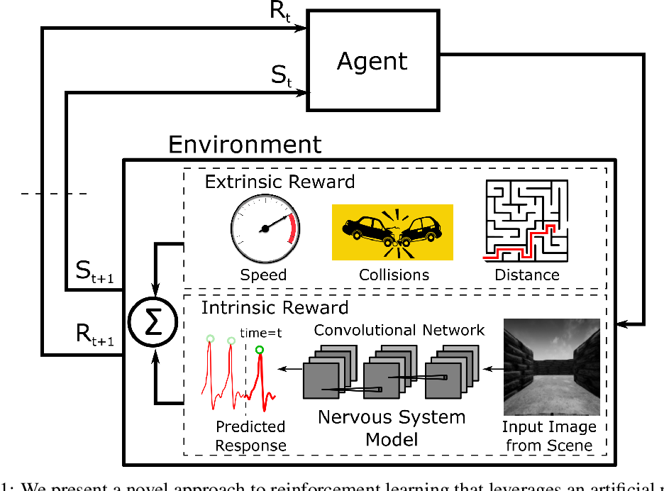 Figure 1 for Visceral Machines: Reinforcement Learning with Intrinsic Rewards that Mimic the Human Nervous System