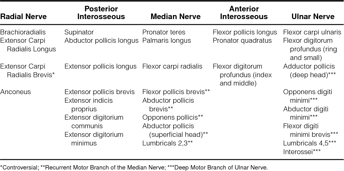 Upper extremity peripheral nerve anatomy: current concepts and ...