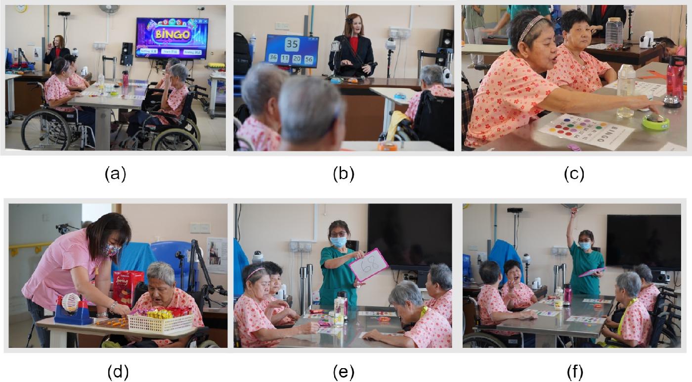 Figure 1 for Does elderly enjoy playing Bingo with a robot? A case study with the humanoid robot Nadine