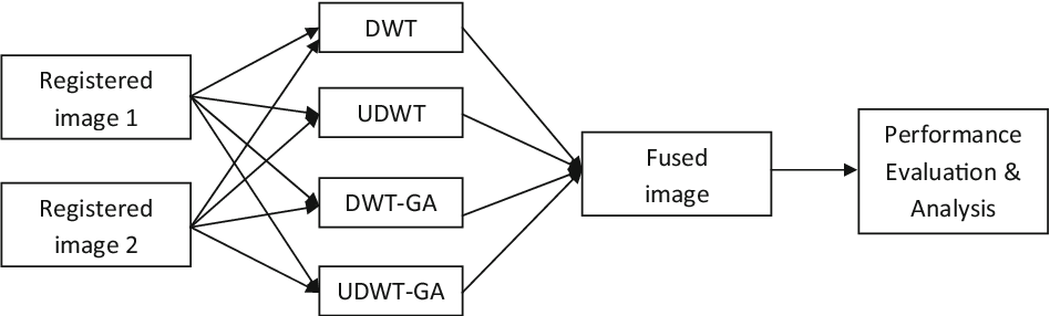 Figure 1 for Efficient DWT-based fusion techniques using genetic algorithm for optimal parameter estimation