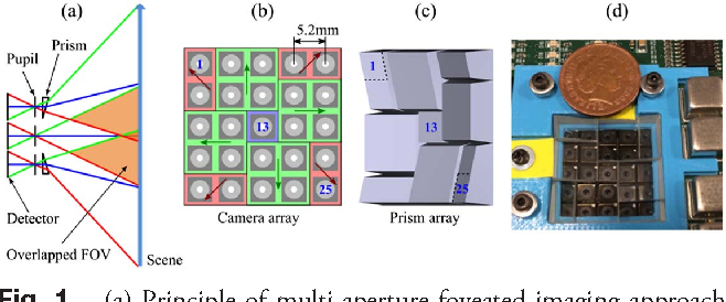Fig. 1. (a) Principle of multi-aperture foveated imaging approach, (b), (c) layout of the camera and prism arrays, respectively, and (d) photograph of the assembled device. Only two types of prisms are used, highlighted by green and red in (b) and shown in (c); arrows in (b) indicate the direction of each prism slope.