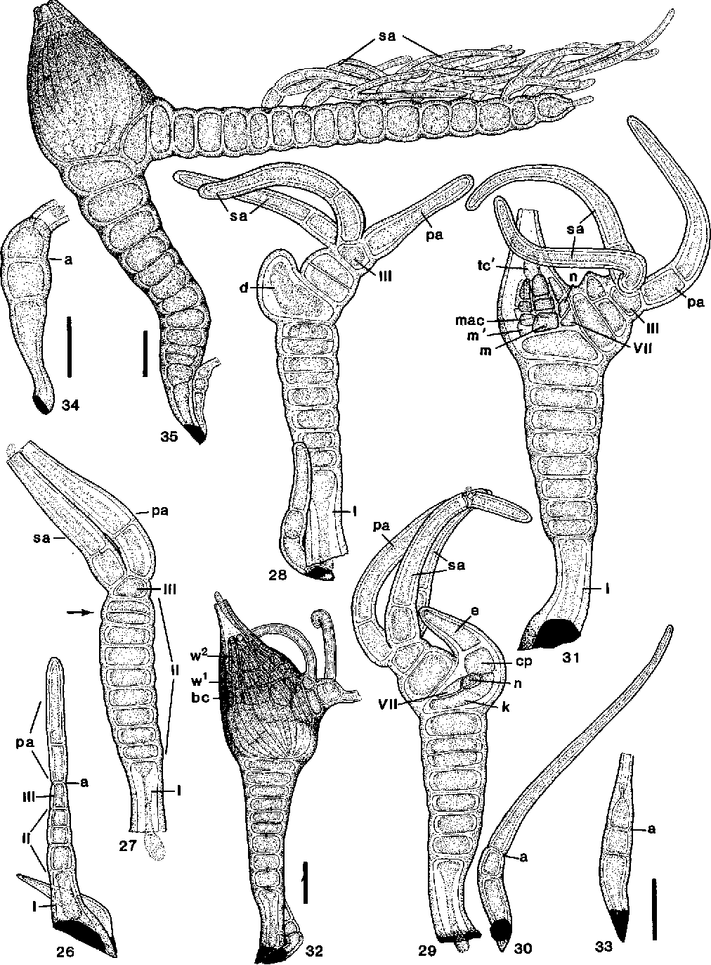 figure 26-35