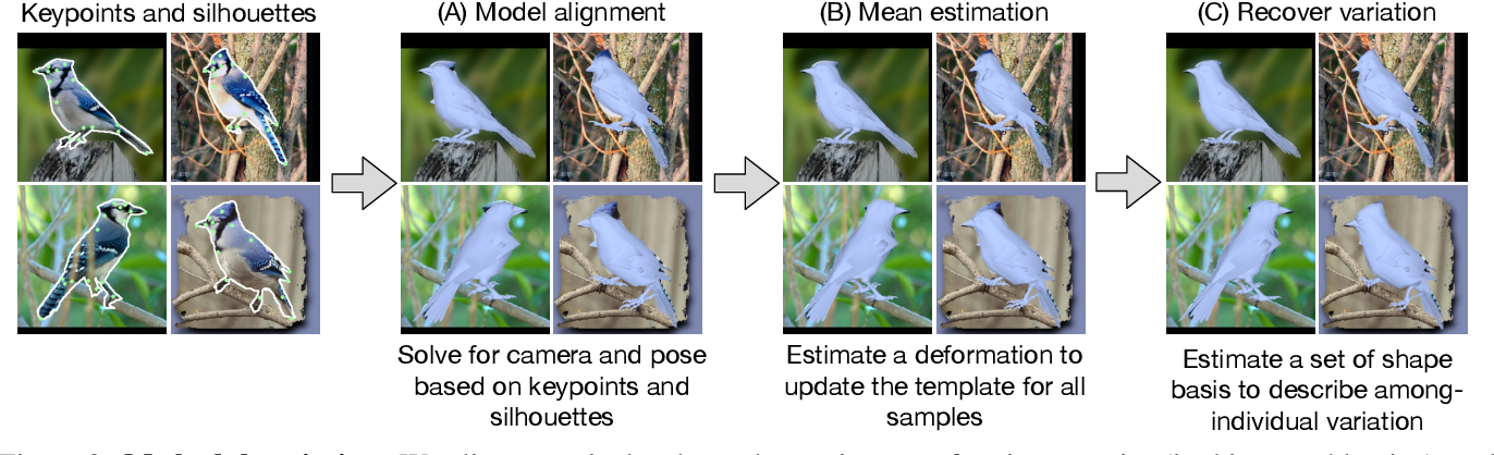 Figure 2 for Birds of a Feather: Capturing Avian Shape Models from Images