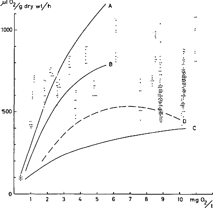 Figure 9 From The Oxygen Consumption Of Mayfly Ephemeroptera And