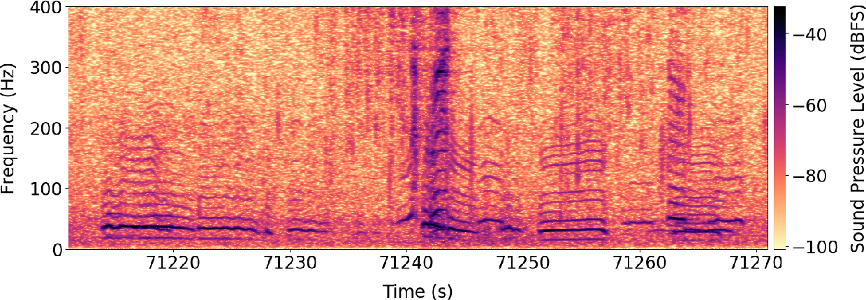 Figure 3 for Automatic Detection and Compression for Passive Acoustic Monitoring of the African Forest Elephant