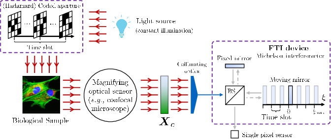 Figure 1 for Compressive Single-pixel Fourier Transform Imaging using Structured Illumination