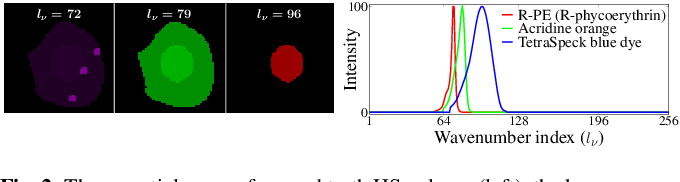 Figure 2 for Compressive Single-pixel Fourier Transform Imaging using Structured Illumination