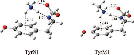 Figure 1 from Investigation of cation-pi interactions in