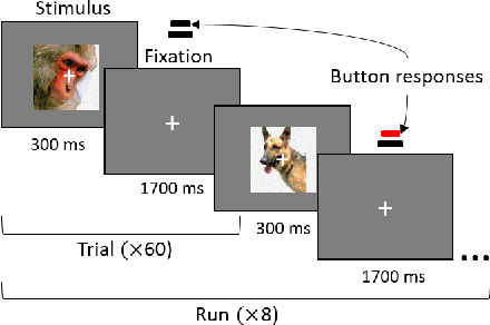 Figure 2 for Representation of White- and Black-Box Adversarial Examples in Deep Neural Networks and Humans: A Functional Magnetic Resonance Imaging Study