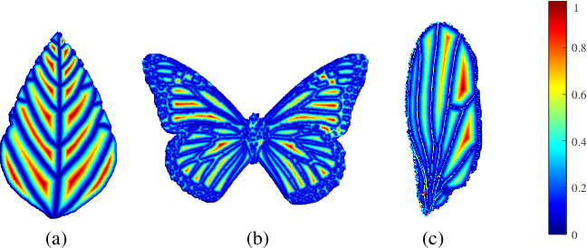 Figure 3 for Patchy Image Structure Classification Using Multi-Orientation Region Transform