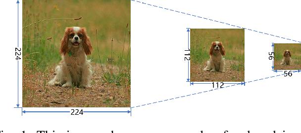 Figure 1 for Thumbnail: A Novel Data Augmentation for Convolutional Neural Network